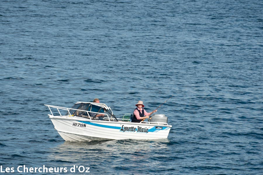 Jervis Bay 021