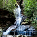 Blue mountains 022