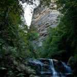 Blue mountains 029