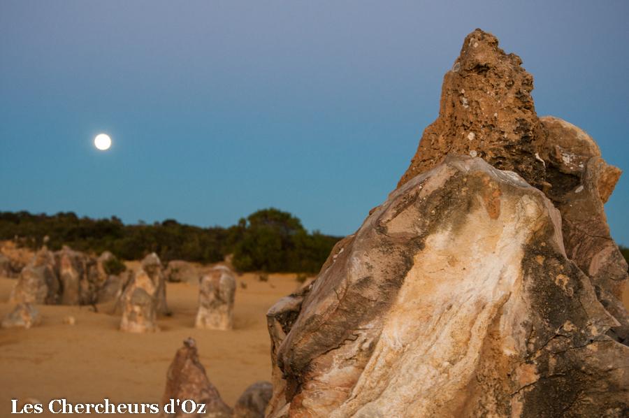 Pinnacles Desert-004