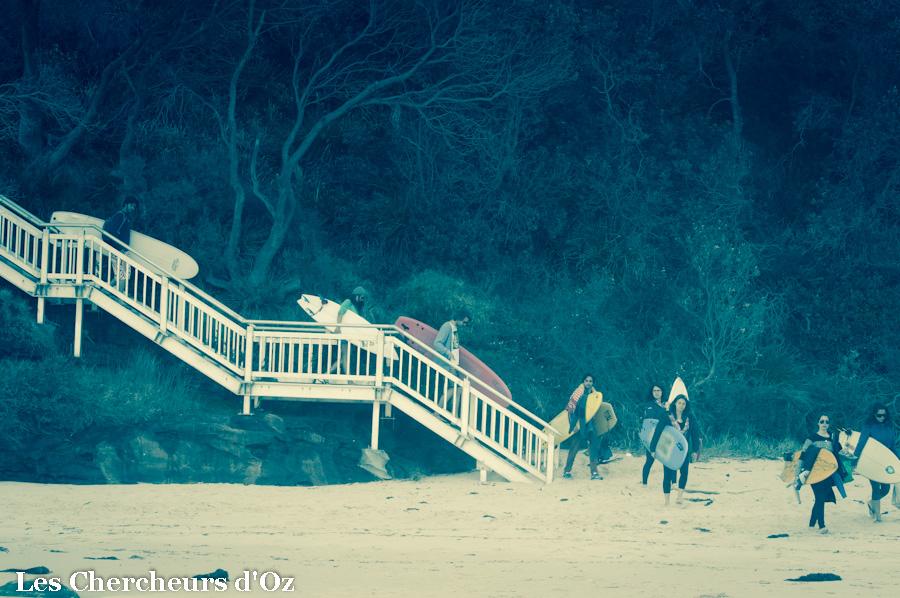 Steamer beach-019